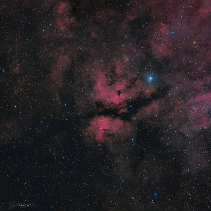 IC 1318